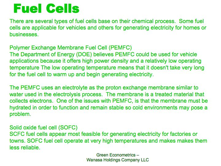 Fuel Cell Type